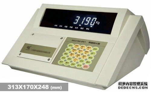 XK3190-DS1